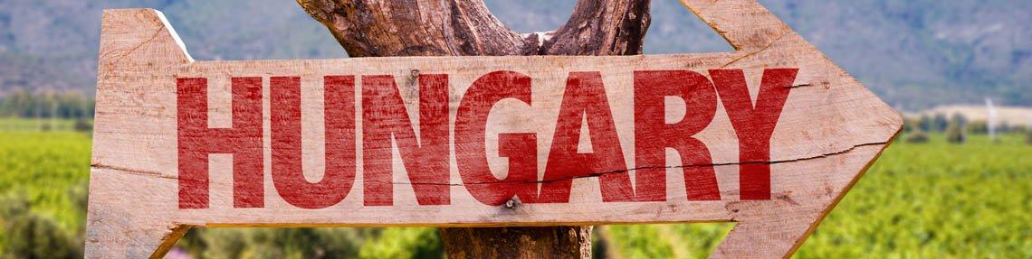 Genießen Sie unsere ungarischen Spezialitäten!